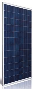 Astronergy ASM6612P-315 Silver Poly Pallet (20) of Solar Panels