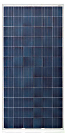 Astronergy CHSM6612P-310 Silver Poly Solar Panel